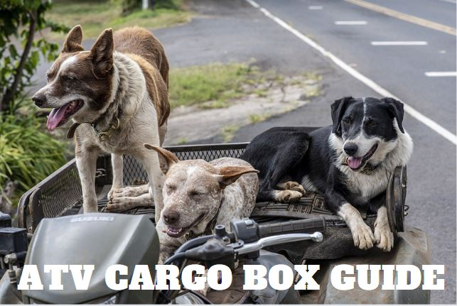 The 4 Best Atv Cargo Boxes In 2020